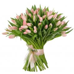Душистые тюльпаны