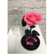 Роза в колбе (розовая)