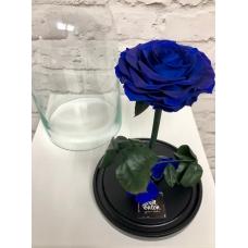 Роза в колбе (синяя)