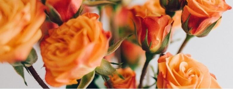 К чему дарят оранжевые розы{q}