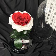 Роза в колбе с сердцем